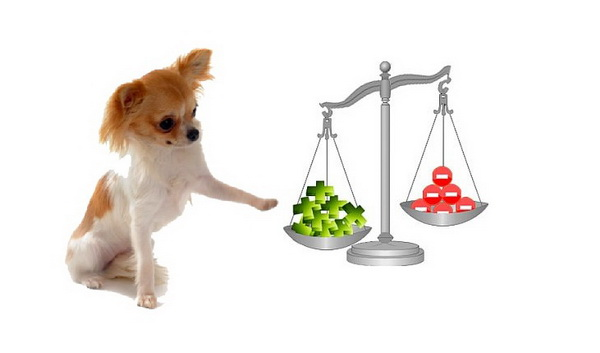 Гипоаллергенный корм для собак Роял Канин (Royal Canin